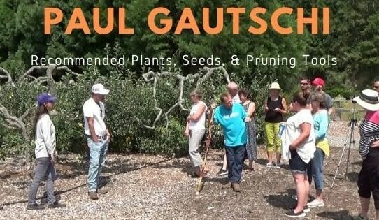 paul gautschi group of people in orchard